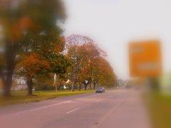 Herbststraße, Focus